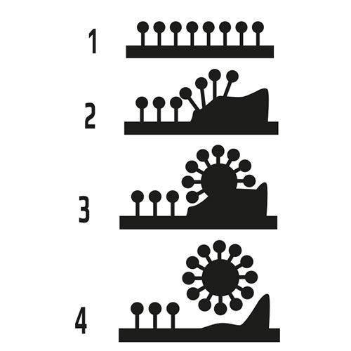 タラゴ スニーカーWASC!のクリーニングプロセス